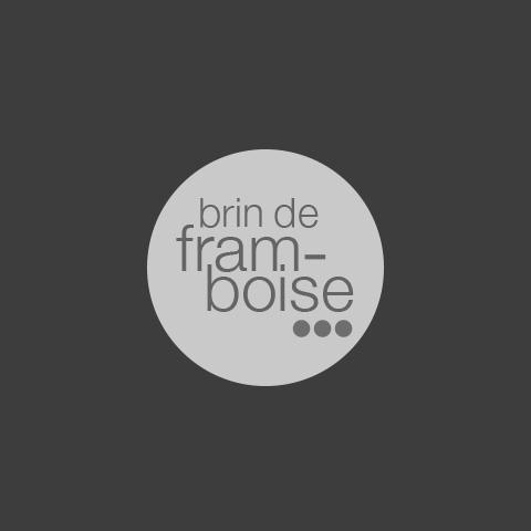 BrindeFramboise04